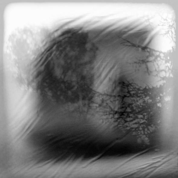 PAYSAGE DE CERVEAU, texte Claude BER, Photographies Adrienne ARTH
